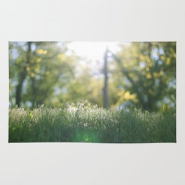 Grass in sunshine Rug