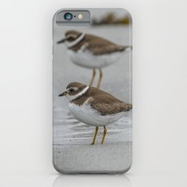 Pair of Plovers on the beach iPhone Case
