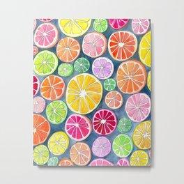 Citrus Painting Metal Print