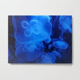 Blue Jellyfish II Metal Print