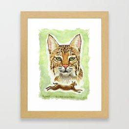 Noel Bobcat - Run Free Framed Art Print