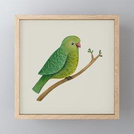 Cute Parrot Framed Mini Art Print