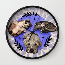 Settle Pets! Wall Clock