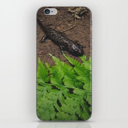 Salamander iPhone Skin