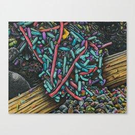 SHART Canvas Print