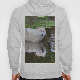 Wolf Reflection Hoody