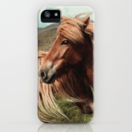 Horses in love iPhone Case