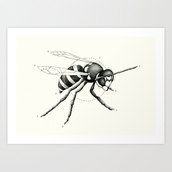 'Wildlife Analysis I' Art Print
