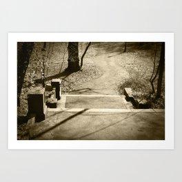 pathways. Art Print