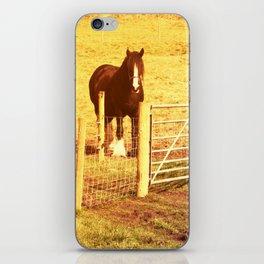Vintage Horses iPhone Skin
