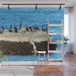 Cormorants Basking on a Boulder Wall Mural