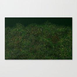 Canopy Scene Canvas Print