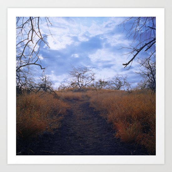 Hawaiian Trail Art Print