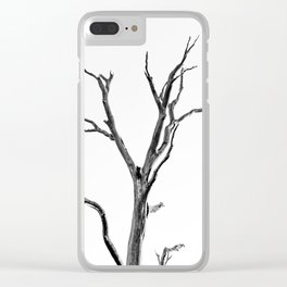 Beautiful Past Trees Clear iPhone Case