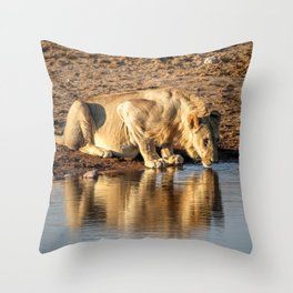 Reflections 4 Throw Pillow