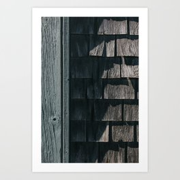 The Beach House Art Print