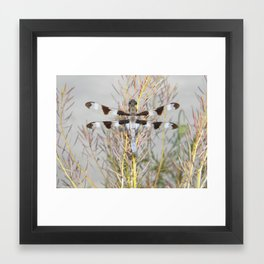 dragonfly tank Framed Art Print