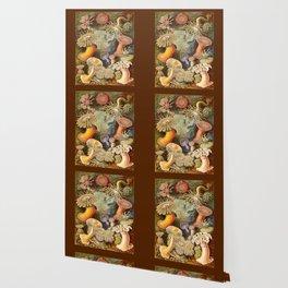 Haeckel Illustration - Marine Life Wallpaper