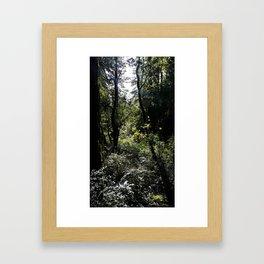 Imagine if Framed Art Print