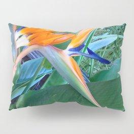 Birds of paradise Pillow Sham