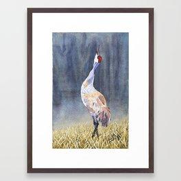 Sandhill in the Mist Framed Art Print