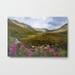 Fireweed Valley Alaska - Mountian Landscape Metal Print