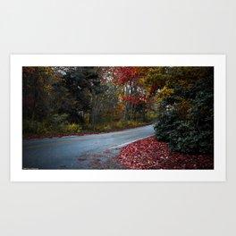 Maine Fall Foliage Art Print