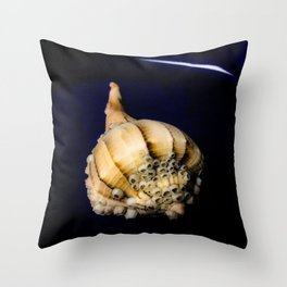 Sea Shell with Barnacles Throw Pillow