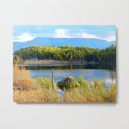 Mount Albert, Lac Neuf and the Beaver Lodge Metal Print