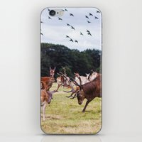 marauders iPhone & iPod Skins featuring Mr Prongs and other Marauders by Gioia De Antoniis