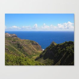 Beautiful colors of the West side of Maui Canvas Print