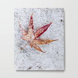 leaf and snow Metal Print