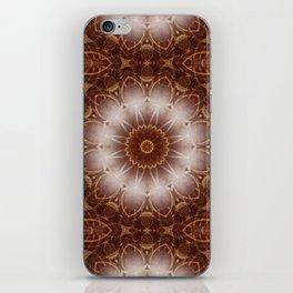 Mandala Golden Earth Circle iPhone Skin