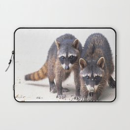 Cute wild Racoons in Costa Rica Laptop Sleeve