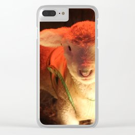 Spring Lamb Clear iPhone Case