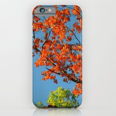 My Fall Leaves Slim Case iPhone 6s