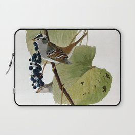 White-crowned Sparrow Laptop Sleeve