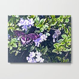Impression of Summer (Butterfly and Periwinkle) Metal Print