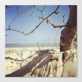 Beach in Sight Canvas Print