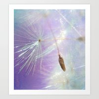 sparkle Art Prints featuring Sparkle by ALLY COXON