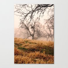 Natural Mystic in the Air Canvas Print