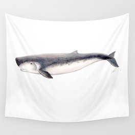 Pygmy sperm whale Wall Tapestry