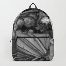 Kostnice Beinhaus Interior Backpack