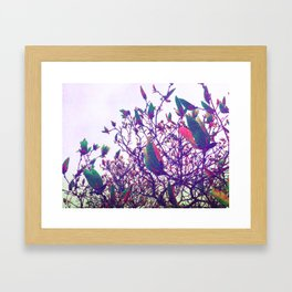 Once Upon a Parrot Framed Art Print