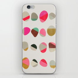 painted pebbles 1 iPhone Skin