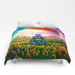 The Perpetually Lost Comforters