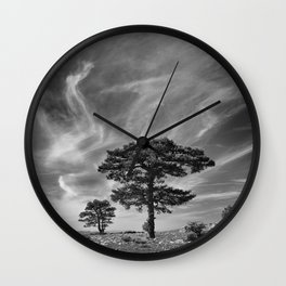 Black Pine At 2000 Meters. Cazorla Natural Park. Wall Clock