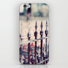 Autumn Fence iPhone & iPod Skin