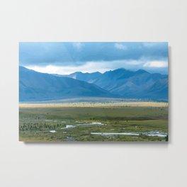 The Last Frontier, Denali National Park Metal Print