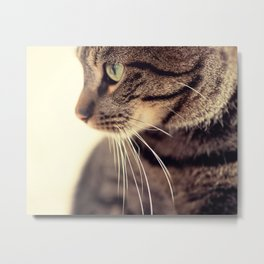 Kitty Love 2 Metal Print
